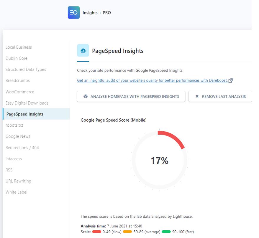 Rapport PageSpeed Insights dans WordPress
