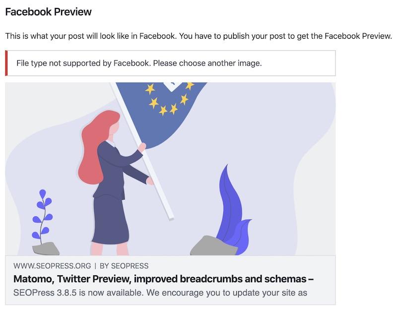 Facebook Preview SEOPress