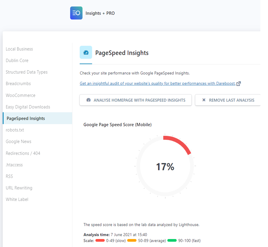 A PageSpeed Insights report from within WordPress